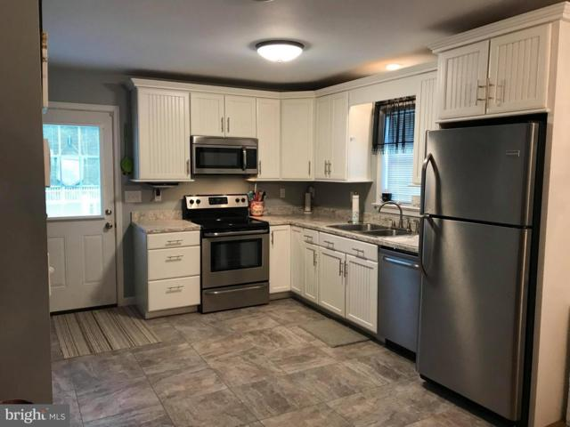 18512 Opessa Street SE, OLDTOWN, MD 21555 (#1002366546) :: ExecuHome Realty