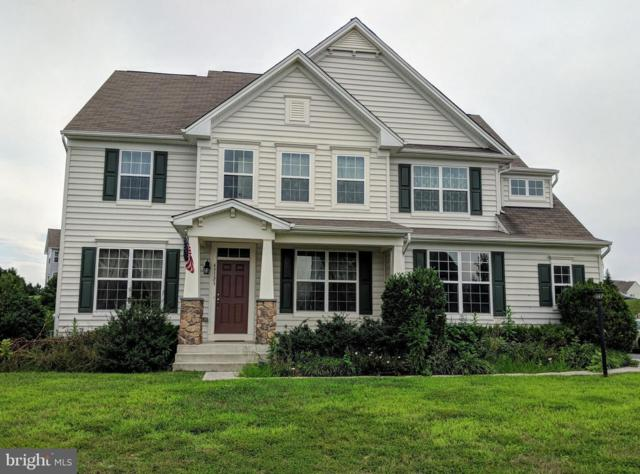43123 Rocks Way, LEESBURG, VA 20176 (#1002492046) :: Remax Preferred | Scott Kompa Group