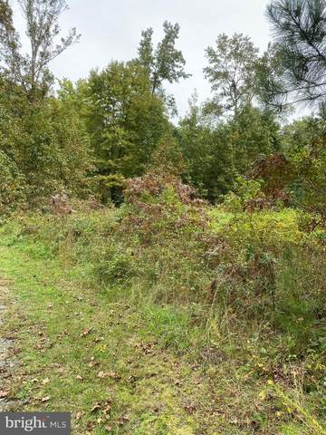 Harmony Road, DENTON, MD 21629 (#1002772214) :: Revol Real Estate