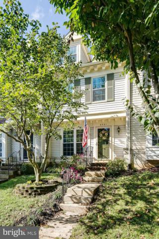 6521 Cypress Point Road, ALEXANDRIA, VA 22312 (#1002776120) :: Colgan Real Estate