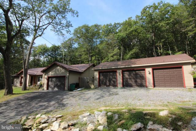 403 E Alpine Drive, TERRA ALTA, WV 26764 (#1003260206) :: Great Falls Great Homes