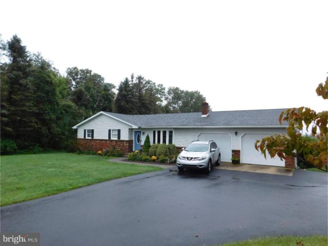 314 Archery Club Road, NEW RINGGOLD, PA 17960 (#1003432458) :: The Joy Daniels Real Estate Group