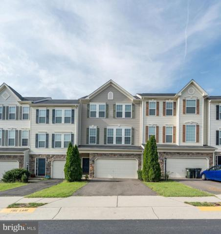 41909 Moreland Mine Terrace, ALDIE, VA 20105 (#1004246530) :: Circadian Realty Group