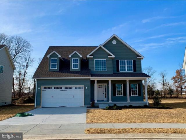 261 Hightide Drive, FREDERICA, DE 19946 (#1005023348) :: The Windrow Group