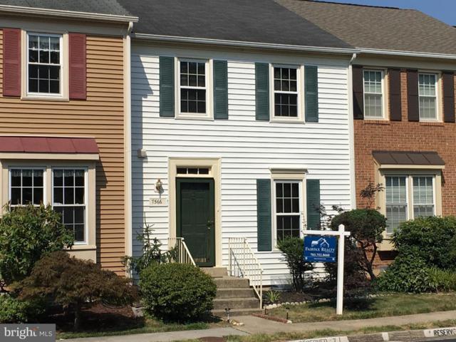 7566 Blanford Court, ALEXANDRIA, VA 22315 (#1005601568) :: Great Falls Great Homes