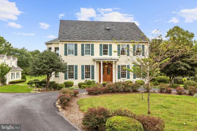 14706 Spring Meadows Drive, DARNESTOWN, MD 20874 (#1006376696) :: Colgan Real Estate