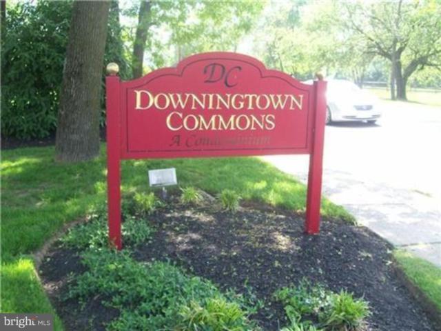 335 E Lancaster Avenue D25, DOWNINGTOWN, PA 19335 (#1006590920) :: Remax Preferred | Scott Kompa Group