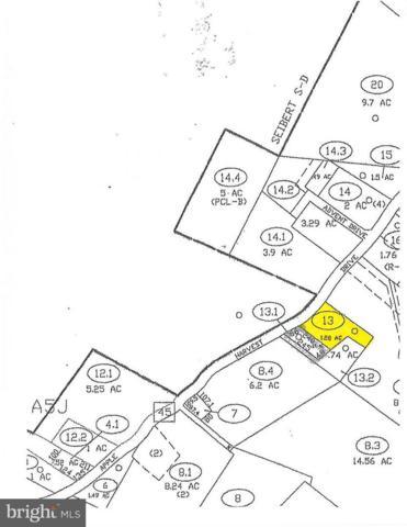13978 Apple Harvest Drive, MARTINSBURG, WV 25403 (#1007536576) :: Hill Crest Realty