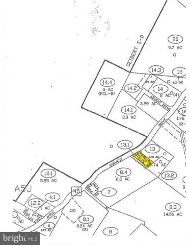 13966 Apple Harvest Drive, MARTINSBURG, WV 25403 (#1007536580) :: Hill Crest Realty