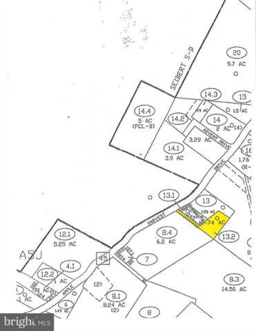 13952 Apple Harvest Drive, MARTINSBURG, WV 25403 (#1007536586) :: Hill Crest Realty
