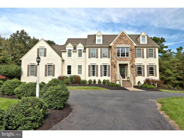 13 Lowbridge Passage, MEDFORD, NJ 08055 (#1007541208) :: McKee Kubasko Group