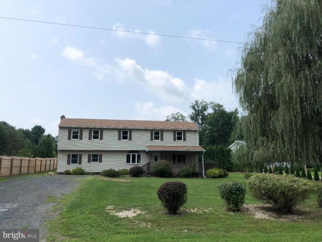 399 Pine Creek Drive, ORWIGSBURG, PA 17961 (#1007541954) :: Ramus Realty Group
