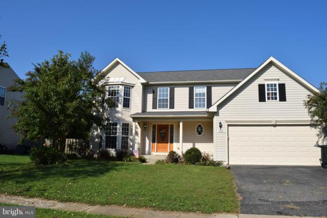 509 Little Kidwell Avenue, CENTREVILLE, MD 21617 (#1007542590) :: Colgan Real Estate