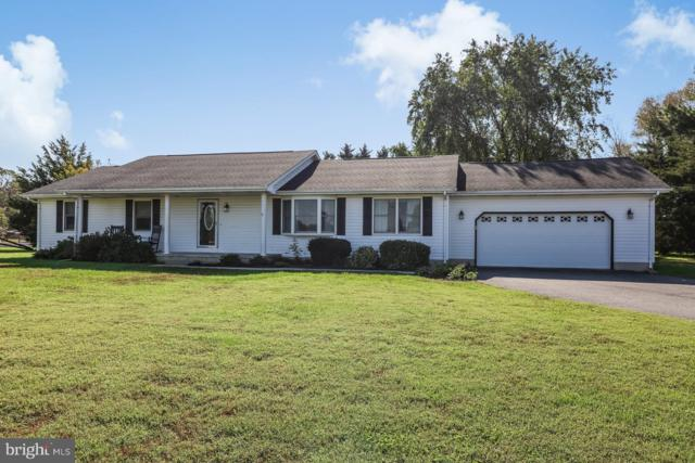 231 E Evens Road, VIOLA, DE 19979 (#1007545440) :: Remax Preferred | Scott Kompa Group
