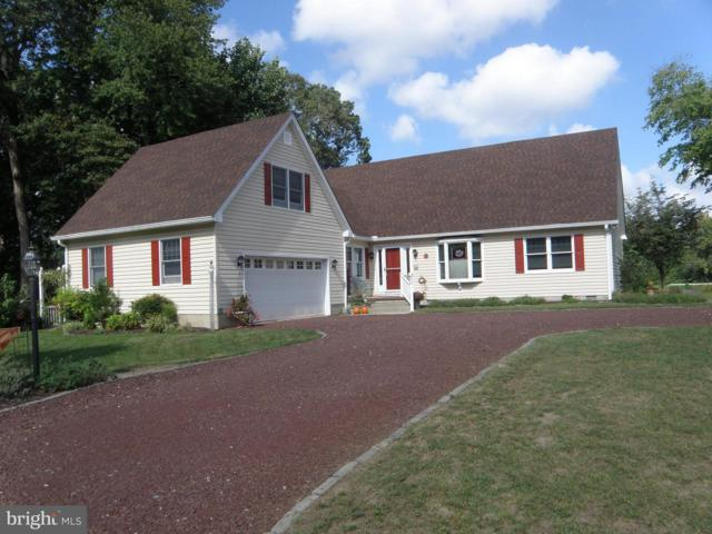 23125 Lakeview Drive, MILLSBORO, DE 19966 (#1007546070) :: Colgan Real Estate