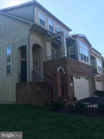 43274 Sunderleigh Square, BROADLANDS, VA 20148 (#1007573086) :: Jim Bass Group of Real Estate Teams, LLC