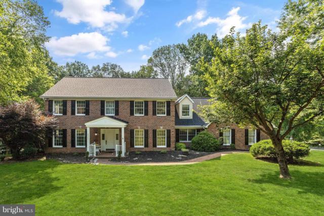 9022 Elmonte Woods Way, ELLICOTT CITY, MD 21042 (#1007796112) :: Colgan Real Estate