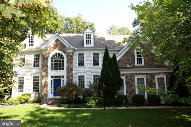 11907 Sandy Hill Court, SPOTSYLVANIA, VA 22553 (#1007812064) :: Colgan Real Estate