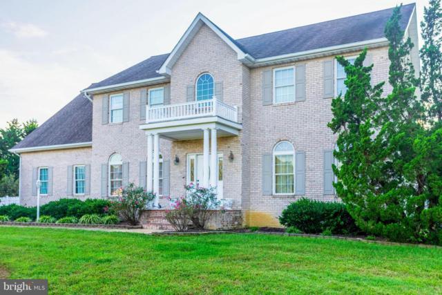 6205 Nicole Drive, SAINT LEONARD, MD 20685 (#1007812682) :: Colgan Real Estate