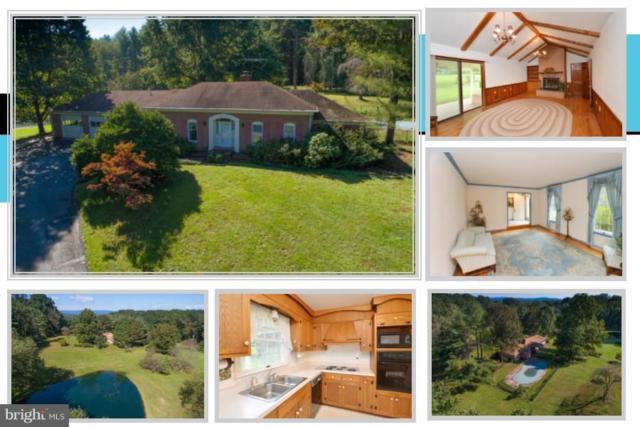 37685 Hughesville Road, PURCELLVILLE, VA 20132 (#1008109084) :: Colgan Real Estate