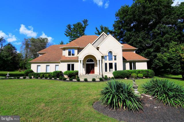 20217 New Hampshire Avenue, BRINKLOW, MD 20862 (#1008166336) :: Colgan Real Estate