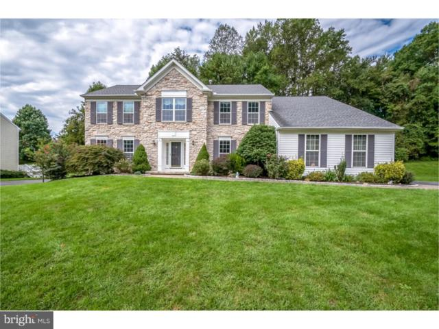 383 Mourning Dove Drive, NEWARK, DE 19711 (#1008168124) :: McKee Kubasko Group