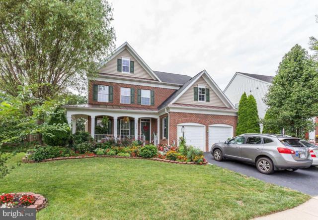 12509 Erroll Lane, BRISTOW, VA 20136 (#1008171494) :: Colgan Real Estate