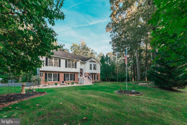 3309 Hunters Trail Drive, AMISSVILLE, VA 20106 (#1008198630) :: Great Falls Great Homes