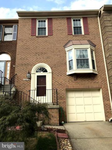 5976 Norham Drive, ALEXANDRIA, VA 22315 (#1008213778) :: RE/MAX Executives