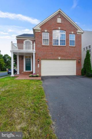 3787 Louise Avenue, CHANTILLY, VA 20151 (#1008342618) :: Remax Preferred | Scott Kompa Group
