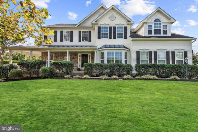 42813 Vestals Gap Drive, BROADLANDS, VA 20148 (#1008344130) :: Browning Homes Group