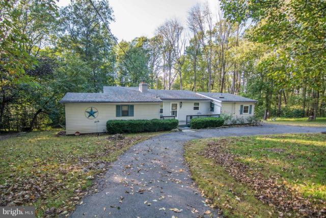 932 Massanutten Mountain Drive, FRONT ROYAL, VA 22630 (#1008353316) :: Remax Preferred | Scott Kompa Group