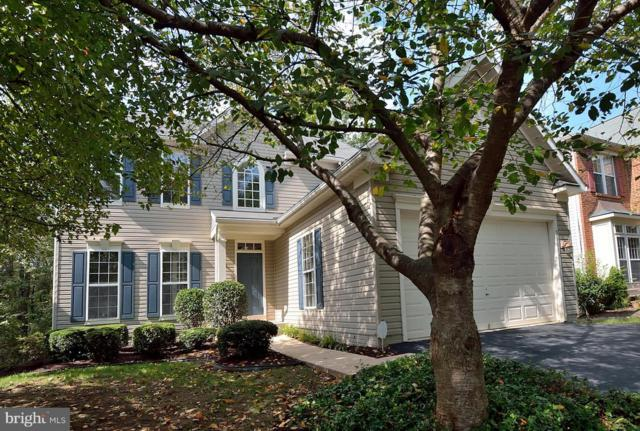 26113 Rachel Hill Drive, CHANTILLY, VA 20152 (#1008354278) :: RE/MAX Executives
