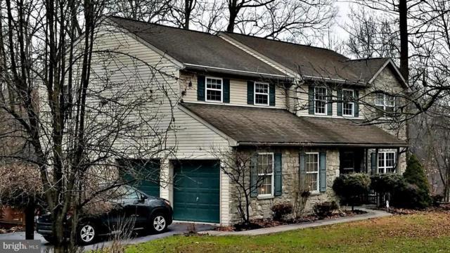 133 Hartz Store Road, MOHNTON, PA 19540 (#1008355974) :: Colgan Real Estate