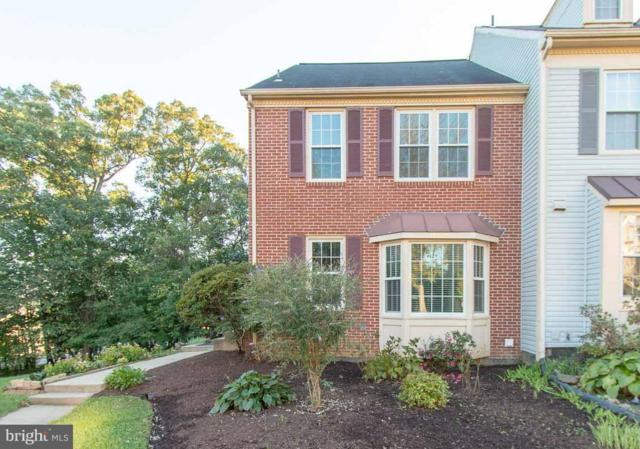 14059 Betsy Ross Lane, CENTREVILLE, VA 20121 (#1008357250) :: Advance Realty Bel Air, Inc