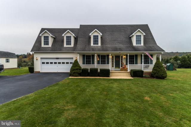 3620 Frederick Pike, WINCHESTER, VA 22603 (#1008668902) :: The Gus Anthony Team