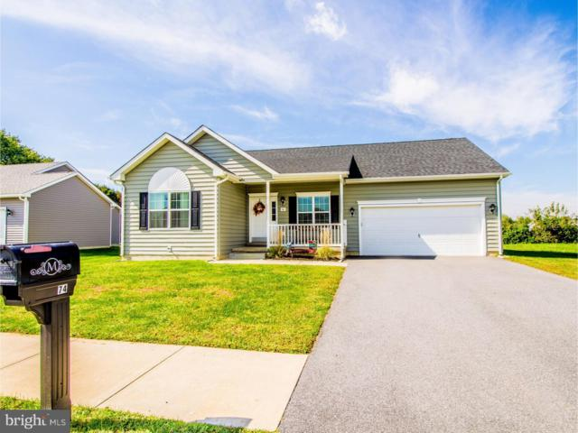 74 W Radison Run, CLAYTON, DE 19938 (#1009130264) :: Brandon Brittingham's Team