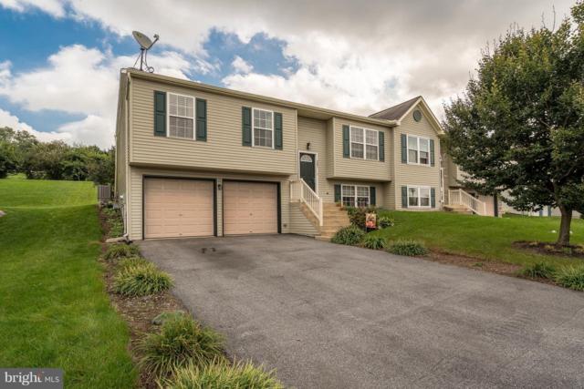 261 Beech Street, DENVER, PA 17517 (#1009908140) :: Colgan Real Estate