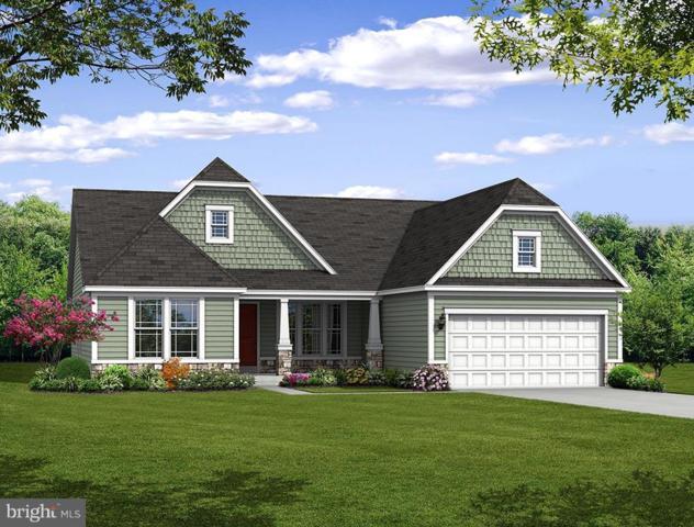 0 Ragan Road, CONOWINGO, MD 21918 (#1009909056) :: Colgan Real Estate