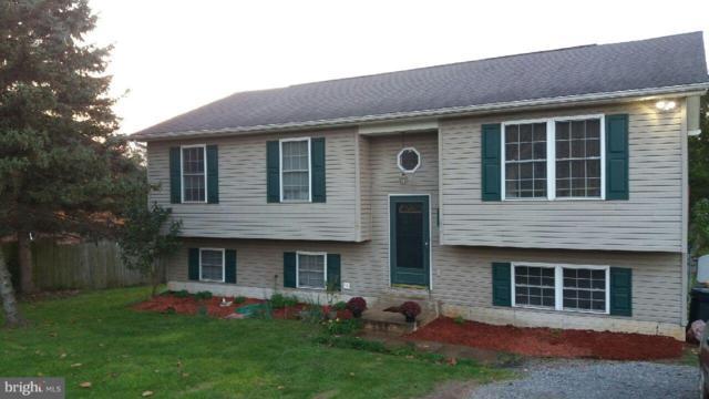 2414 Laurel Lane, MIDDLETOWN, VA 22645 (#1009910122) :: Colgan Real Estate