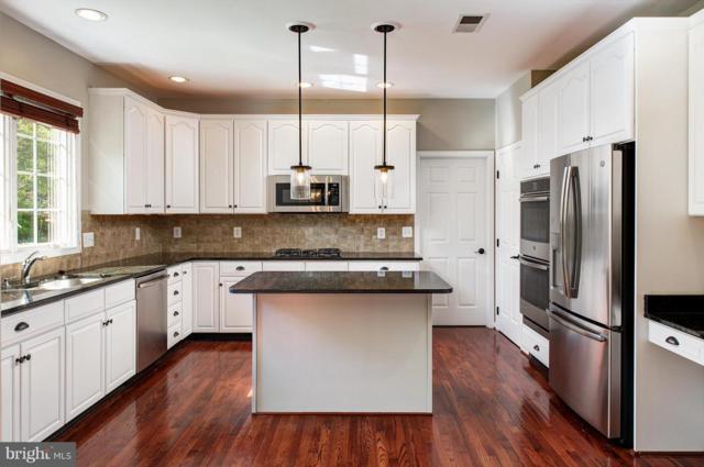 19685 Player Court, ASHBURN, VA 20147 (#1009911194) :: Colgan Real Estate