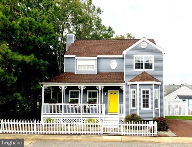 38494 S Hampton Drive, FRANKFORD, DE 19945 (#1009911400) :: Joe Wilson with Coastal Life Realty Group