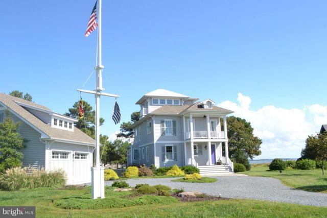 21388 Ferry Landing Road, TILGHMAN, MD 21671 (#1009912812) :: Colgan Real Estate