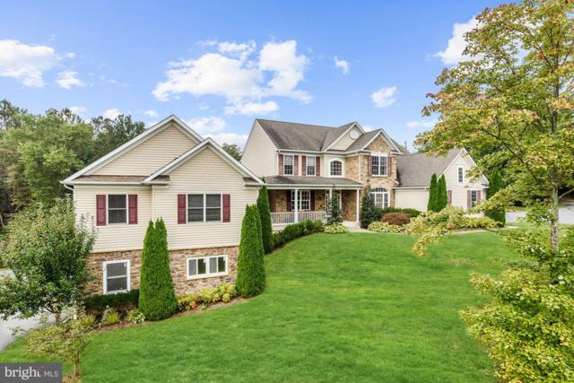 4040 Baltimore National Pike, MOUNT AIRY, MD 21771 (#1009913582) :: Colgan Real Estate