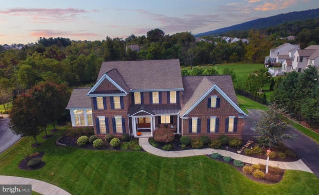 2370 Woodstream Way, ENOLA, PA 17025 (#1009914002) :: Colgan Real Estate