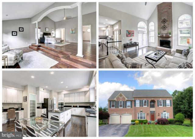 9100 Northedge Drive, SPRINGFIELD, VA 22153 (#1009914630) :: Colgan Real Estate