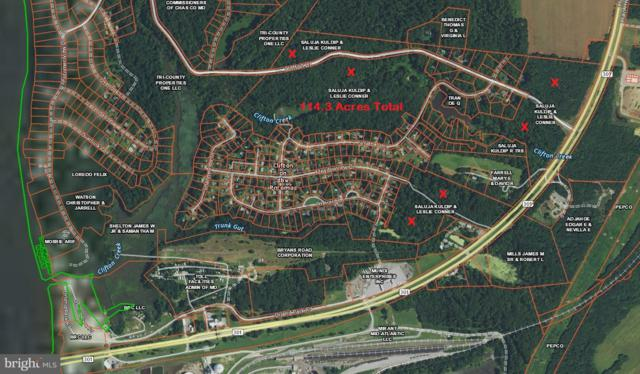Cliffton Drive, NEWBURG, MD 20664 (#1009914748) :: Network Realty Group