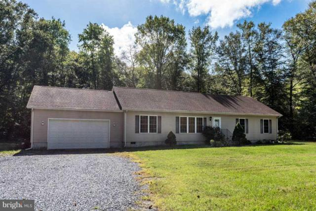 33146 Deer Run Road, SELBYVILLE, DE 19975 (#1009921760) :: RE/MAX Coast and Country