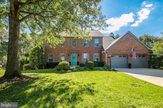 47753 Rafter Court, STERLING, VA 20165 (#1009925854) :: The Piano Home Group