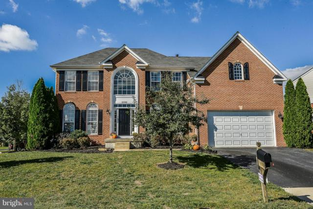 25301 Ultimate Drive, ALDIE, VA 20105 (#1009925884) :: RE/MAX Plus